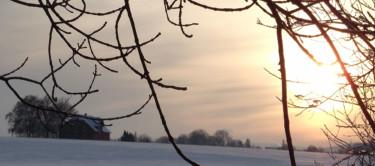 Winter in Hemmingen